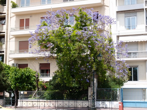 Аренда апартаментов в греции крит